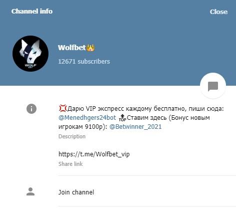 wolf bet информация о канале