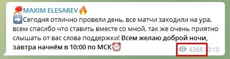 Просмотры канала Максима Елизарьева